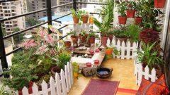 Balkon Dekorasyonu Nasıl Yapılmalı?